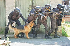 Распад бандитских бригад в Одессе