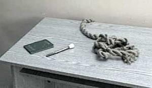 Вещи, найденные в карманах Ряховского при аресте : паспорт, ригельный ключ и верёвка, в точности соответствовавшая той, из которой была сделана петля в сарае