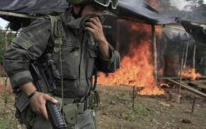 мексиканские наркокартели воюют с регулярной армией.