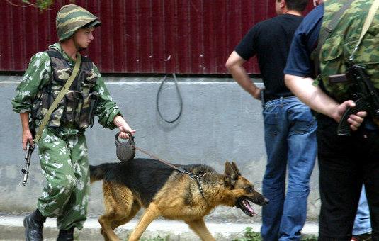Люди, имевшие связь с боевиками, задержаны в Чечне