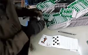 Скрипач успешно специализировался на карточных аферах