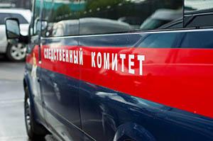 Во Владивостоке возбуждено уголовное дело об изнасиловании 11-летней девочки