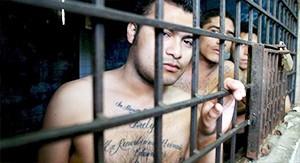 Банда из Гватемалы арестована в полном составе