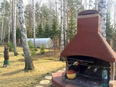 Теплица и русская печка внутри соснового лес