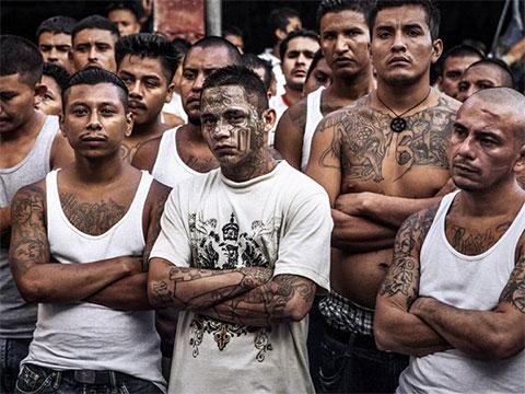 Мигранты с боевым опытом из Гватемалы