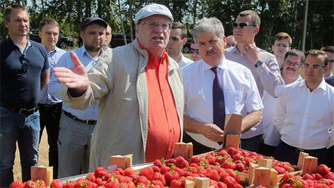Владимир Жириновский и Павел Грудинин