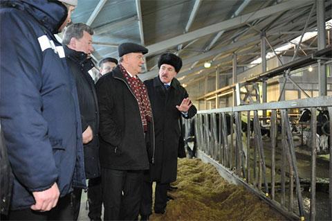 Геннадий Зюганов и Павел Грудинин во время посещения Совхоза имени Ленина