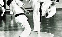 Советское карате