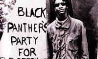 Черные пантеры США