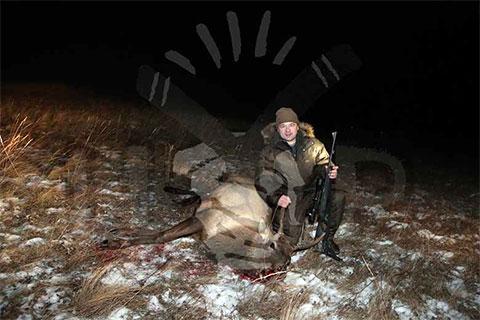 Андрей Воробьев позирует с оленем, заботливо убитым местными егерями