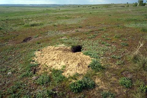 Медведицкая гряда - тоннели