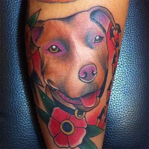 Цветная татуировка питбуля на икре у девушки