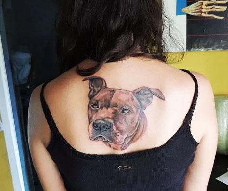 Татуировка питбуля на спине девушки
