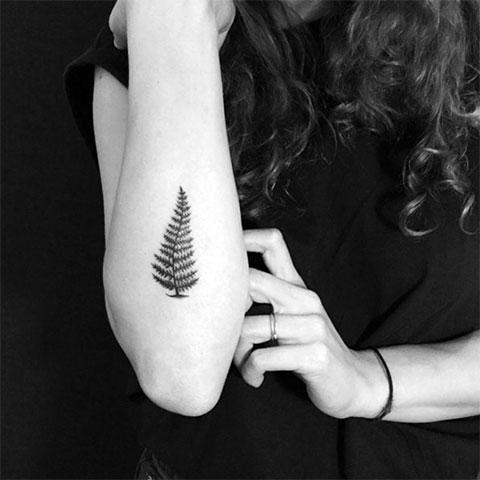 Женская татуировка с папоротником на руке