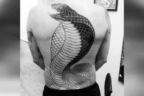 Тату кобра на спине