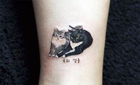 Тату с двумя кошками у девушки