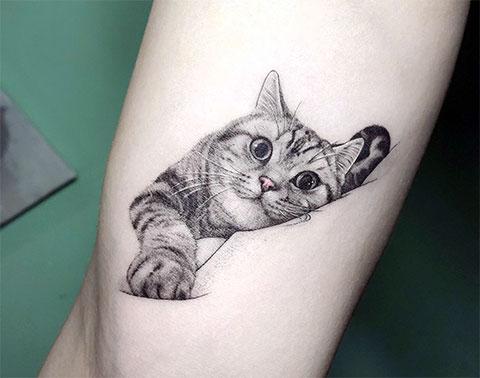 Татуировка с кошкой на руке для девушек