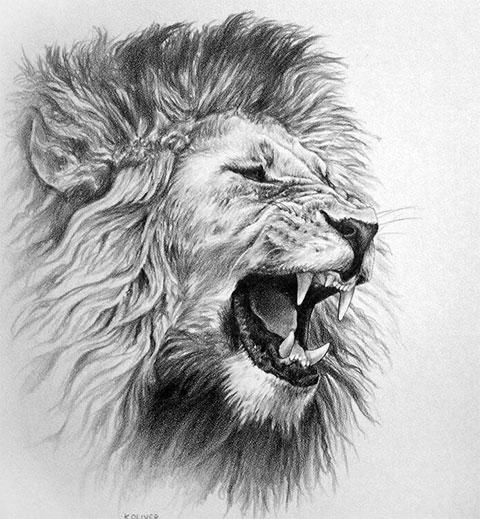 Оскал льва - эскиз для мужской татуировки