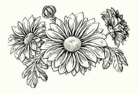 Эскиз цветов для тату на руке