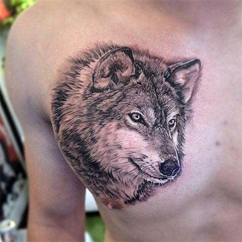 Тату голова волка на груди