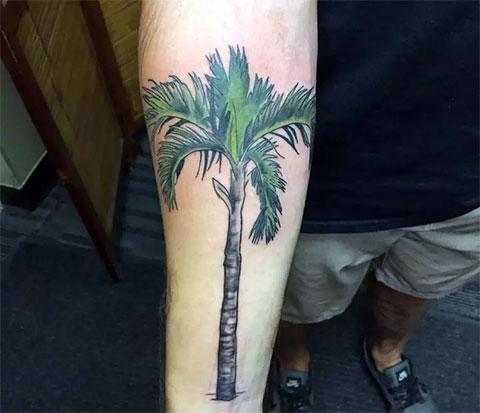 Цветная татуировка пальмы на руке - фото