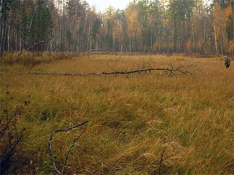 Чёртова поляна или чертово кладбище