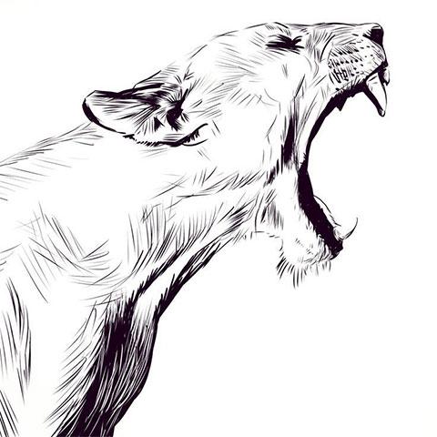 Эскиз для тату в стиле графика