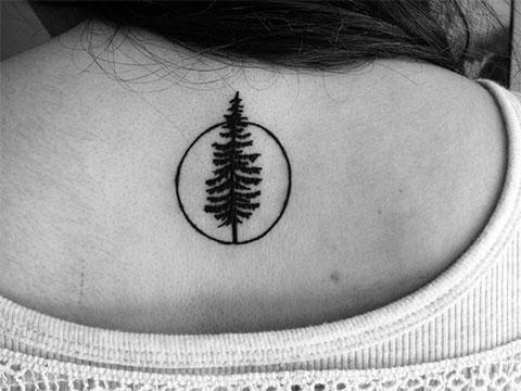 Тату с деревом на спине у девушки