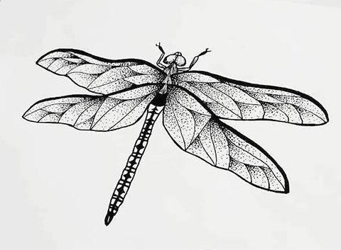 Стрекоза - эскиз для татуировки