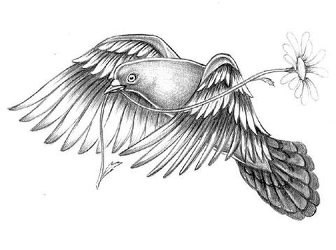 Эскиз голубя для тату
