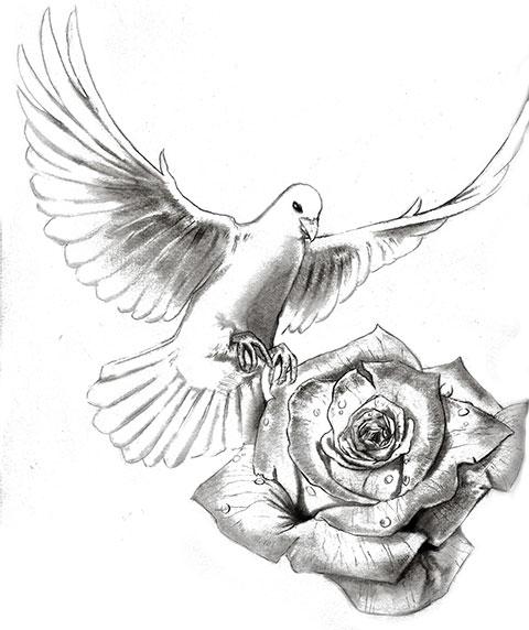 Голубь с цветком - эскиз для татуировки