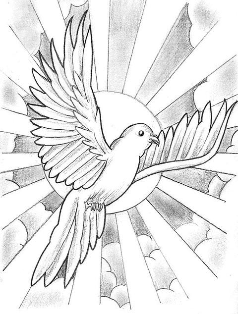 Эскиз голубя с лучами для татуировки