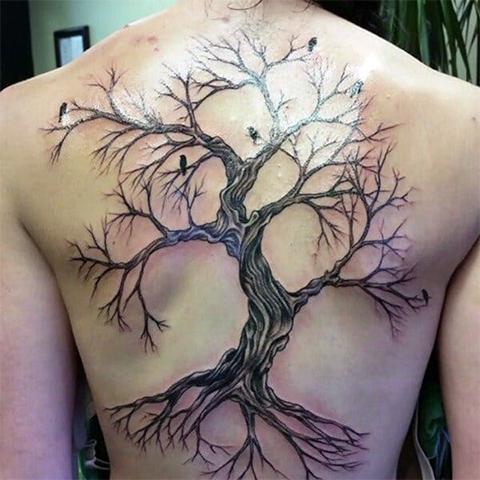 Тату дерево на спине