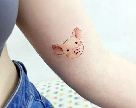 Тату свиньи на руке