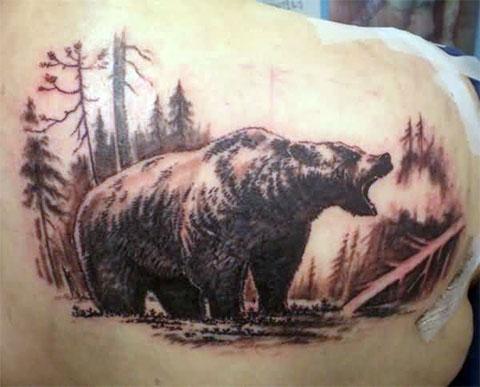 Тату медведя на лопатке у мужчины
