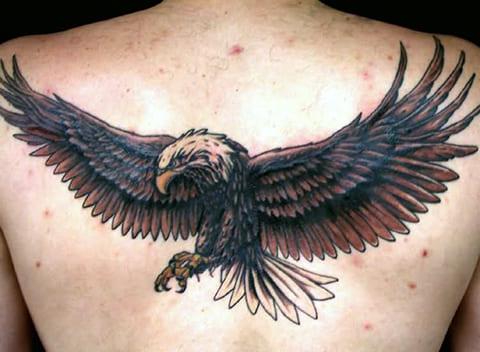 Татуировка на спине с орлом - фото