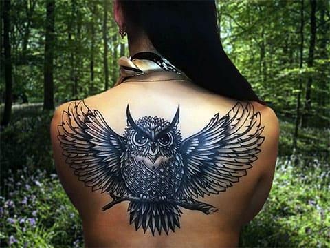 Тату сова на спине у девушки