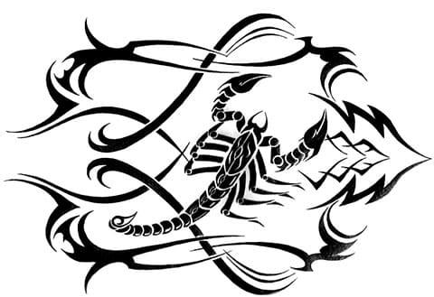 Эскиз скорпиона для тату