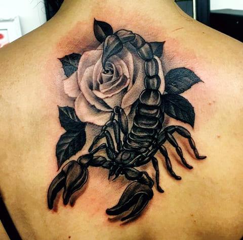 Тату скорпион с цветком на спине