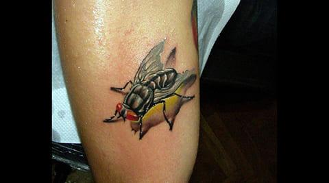 Цветная тату муха