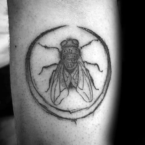Тату муха в круге