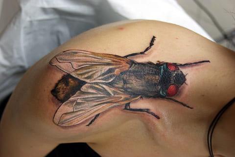 Тату муха у девушки на плече - фото