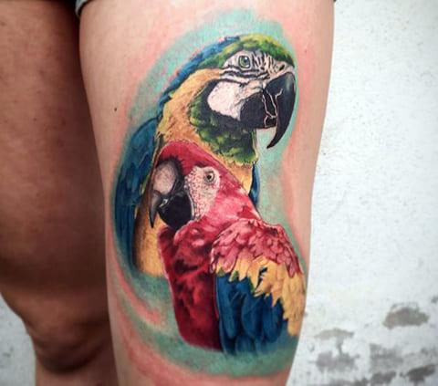Татуировка с попугаями на ноге