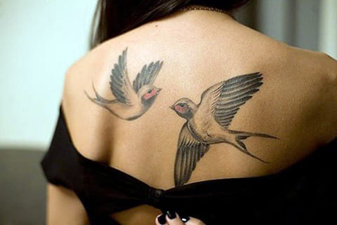 Татуировка с ласточками на спине