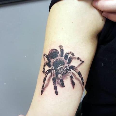 3Д тату с пауком