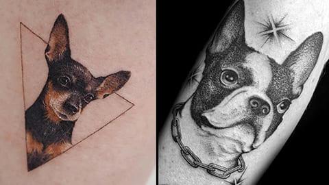 Татуировка собака - фото