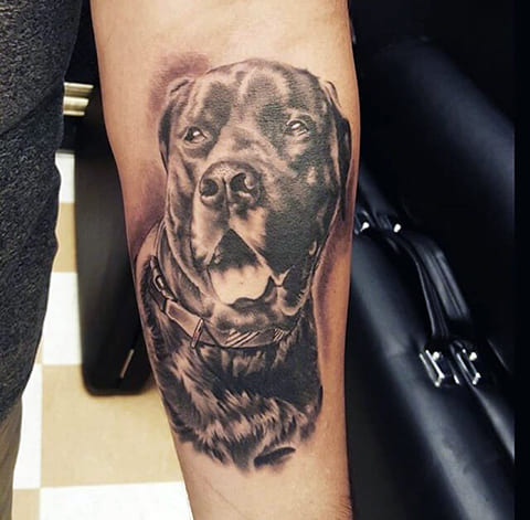 Тату собака на предплечье