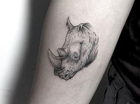 Тату носорог