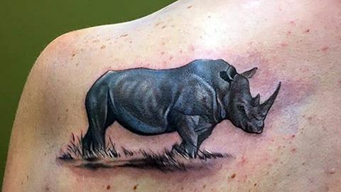 Тату носорог на лопатке - фото