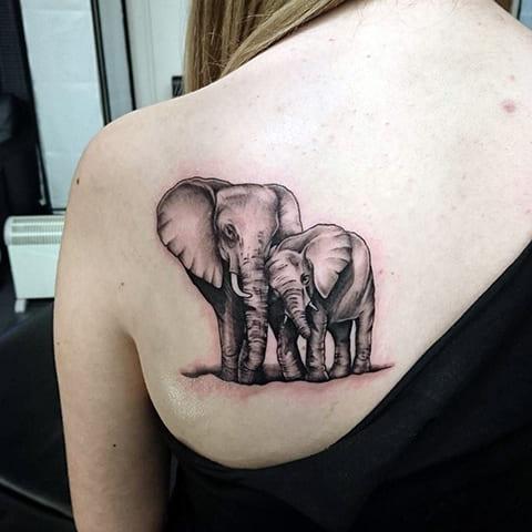 Тату слон и слоненок на лопатке у девушки